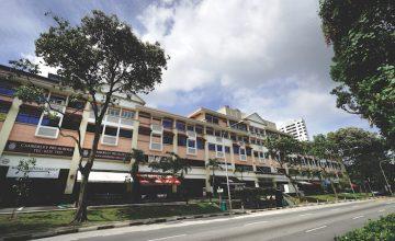 Perfect-ten-condo-freehold-bukit-timah-balmoral-plaza-singapore